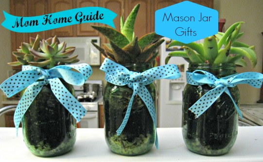 mason-jar-gifts-succulents